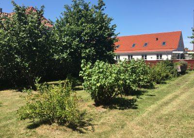 Grønmosegård (38)