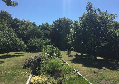 Grønmosegård (46)