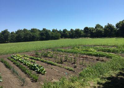 Grønmosegård (52)